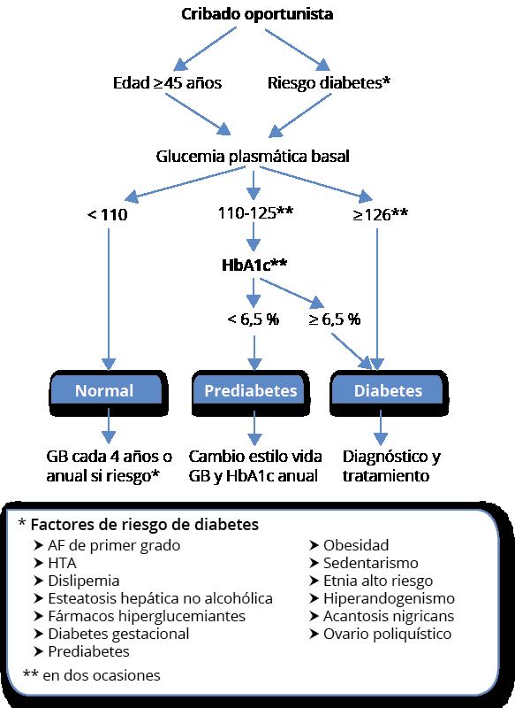 definición de etnia de factores de riesgo de diabetes tipo 1